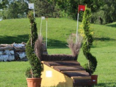 Nominierung für die Deutsche Jugendmeisterschaft der Vielseitigkeit in Wahlsdorf/Liepe
